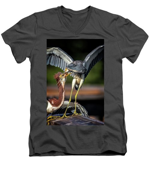 I Don't Want To Hear It Men's V-Neck T-Shirt