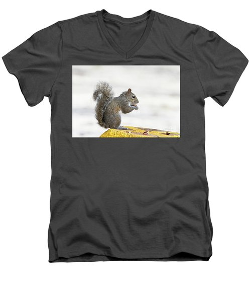 Men's V-Neck T-Shirt featuring the photograph I Have My Nuts by Deborah Benoit