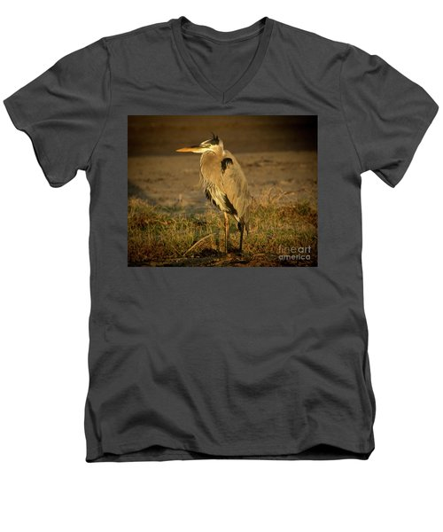 I Know They Are Coming Wildlife Art By Kaylyn Franks Men's V-Neck T-Shirt