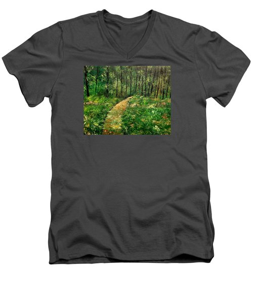 I Think It's Time For Our Walk Men's V-Neck T-Shirt
