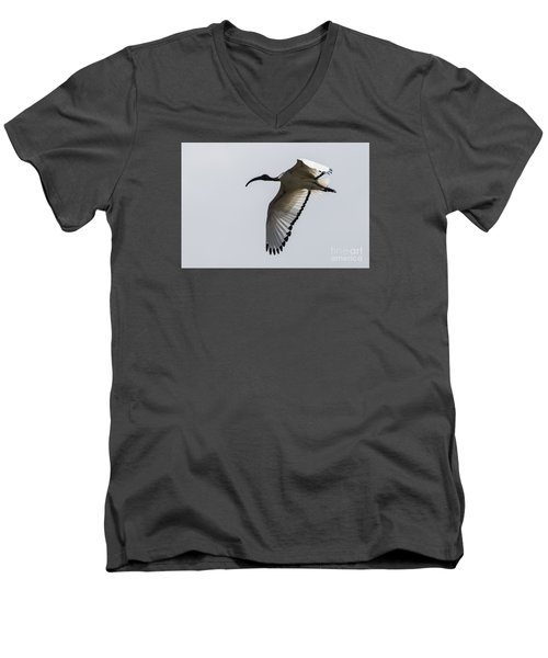 Men's V-Neck T-Shirt featuring the photograph Ibis In Flight by Pravine Chester