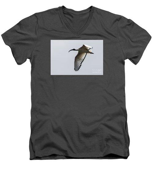 Ibis In Flight Men's V-Neck T-Shirt by Pravine Chester