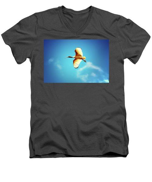 Ibis Of Light Men's V-Neck T-Shirt