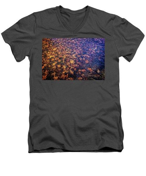 Ice On Oak Leaves Men's V-Neck T-Shirt