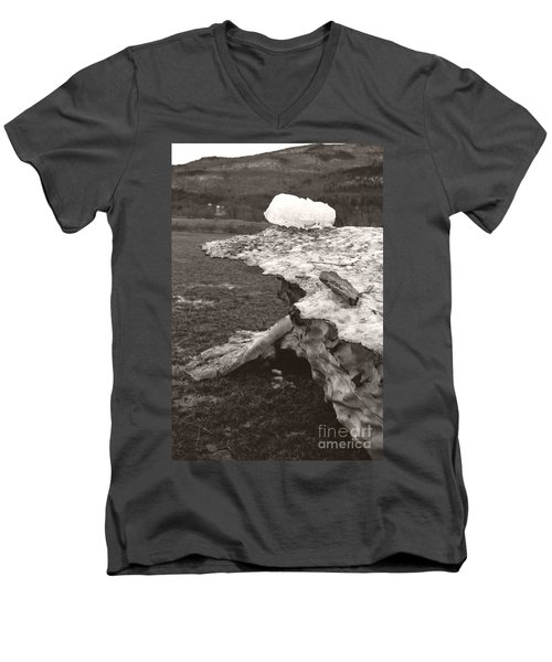 Iceberg Silo Men's V-Neck T-Shirt by Heather Kirk