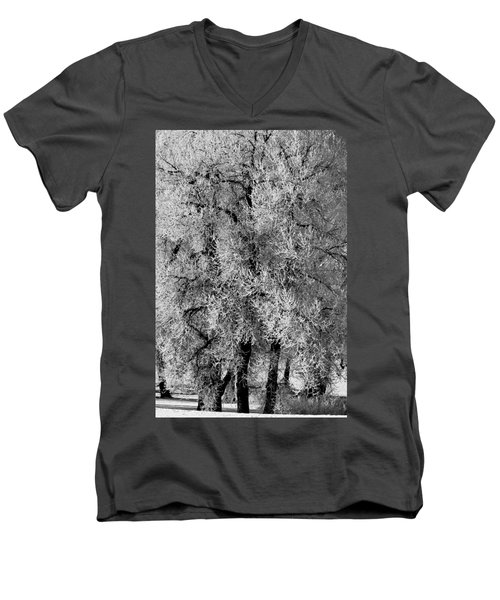 Men's V-Neck T-Shirt featuring the photograph Iced Cottonwoods by Colleen Coccia