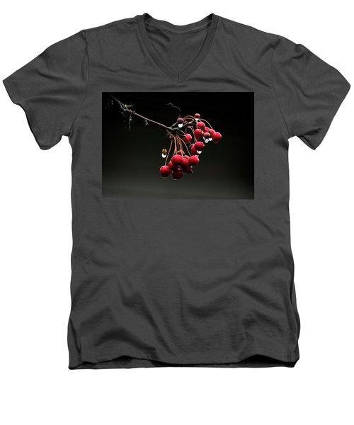 Iced Crab Apples Men's V-Neck T-Shirt