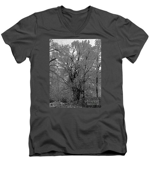 Iced Tree Men's V-Neck T-Shirt by Craig Walters