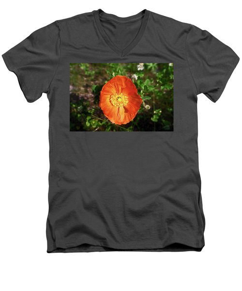 Iceland Poppy Men's V-Neck T-Shirt by Sally Weigand