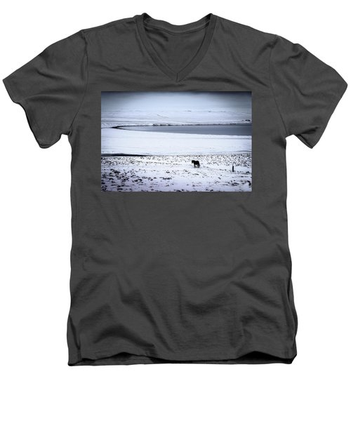 Icelandic Horse Men's V-Neck T-Shirt
