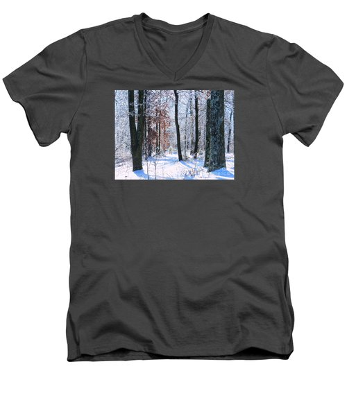 Icey Forest 1 Men's V-Neck T-Shirt by Craig Walters