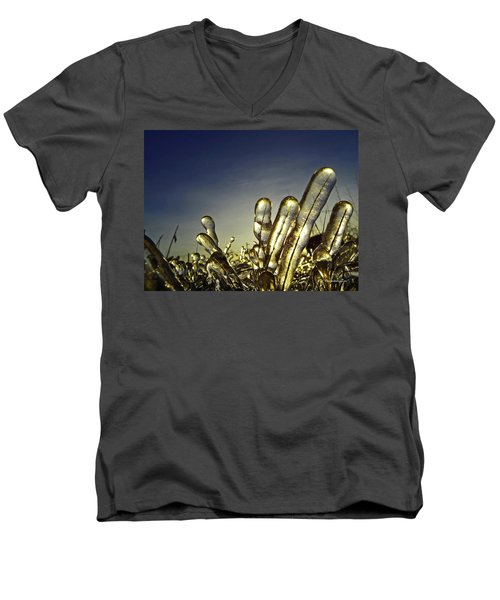 Icy Lawn Men's V-Neck T-Shirt
