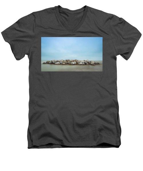 Icy Morning Men's V-Neck T-Shirt