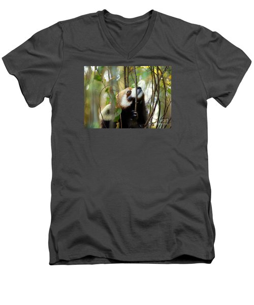 Men's V-Neck T-Shirt featuring the photograph Idgie In A Tree by Lisa L Silva