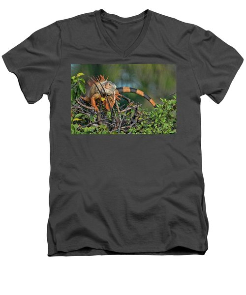 Men's V-Neck T-Shirt featuring the photograph Iggy by Don Durfee