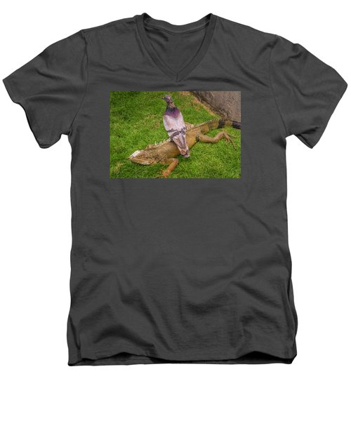 Iguana With Pigeon On Its Back Men's V-Neck T-Shirt