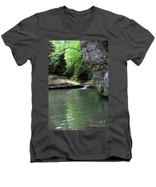 Illinois Canyon Summer Men's V-Neck T-Shirt