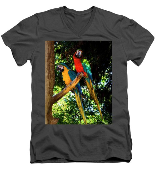 Image Of The Parrott Men's V-Neck T-Shirt