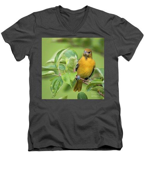Immature Baltimore Oriole  Men's V-Neck T-Shirt by Ricky L Jones