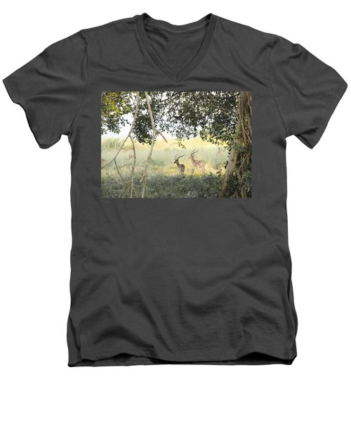 Impala Men's V-Neck T-Shirt by Patrick Kain