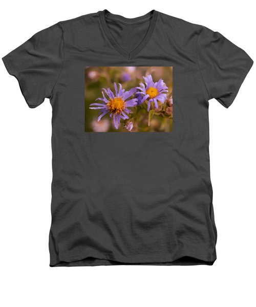 Impressionistic Asters Men's V-Neck T-Shirt