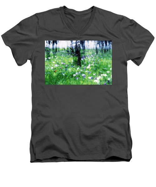 Impressionistic Photography At Meggido 1 Men's V-Neck T-Shirt