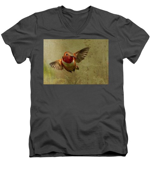 In Flight 2 Men's V-Neck T-Shirt