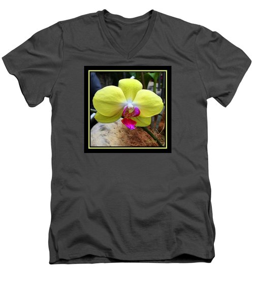 Men's V-Neck T-Shirt featuring the photograph In Living Color by Steven Lebron Langston