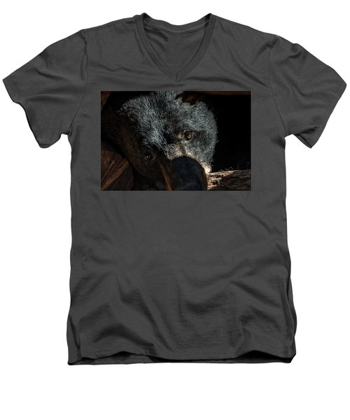 Men's V-Neck T-Shirt featuring the photograph In The Den by Phil Abrams