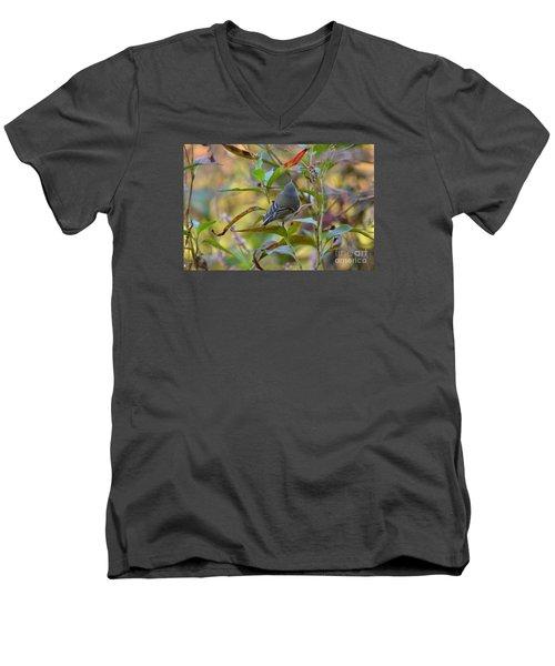 In The Light Men's V-Neck T-Shirt