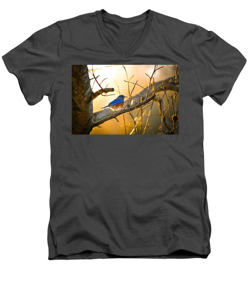 In The Light Men's V-Neck T-Shirt by Shelby  Young