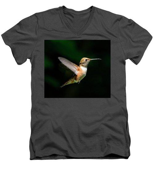 In The Light Men's V-Neck T-Shirt by Sheldon Bilsker