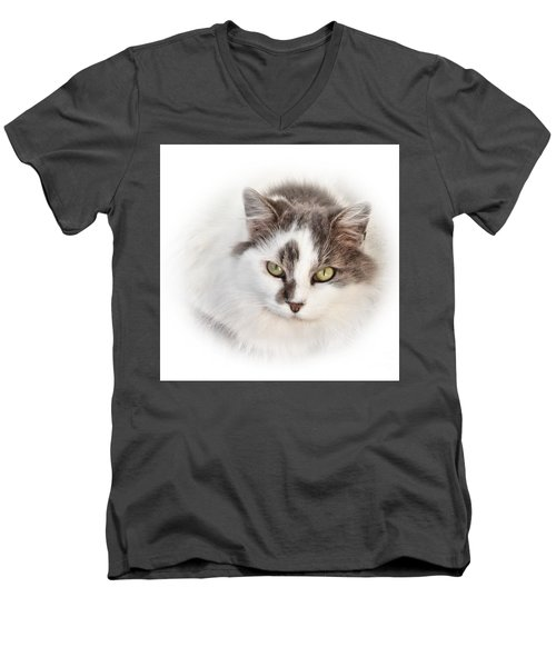 Men's V-Neck T-Shirt featuring the photograph Independance by Debbie Stahre