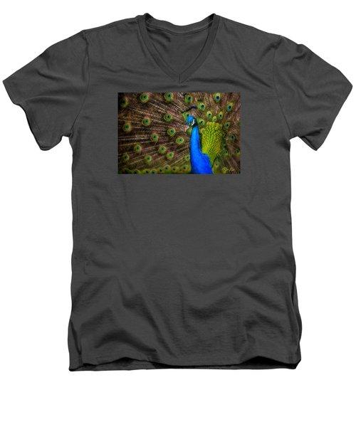 Men's V-Neck T-Shirt featuring the photograph India Blue by Rikk Flohr