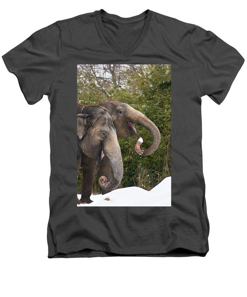 Indian Elephants Eating Snow Men's V-Neck T-Shirt