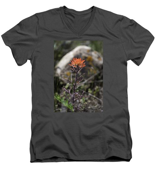 Indian Paintbrush 7 Men's V-Neck T-Shirt