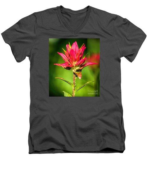 Indian Paintbrush Men's V-Neck T-Shirt
