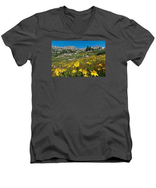 Indian Peaks Summer Wildflowers Men's V-Neck T-Shirt