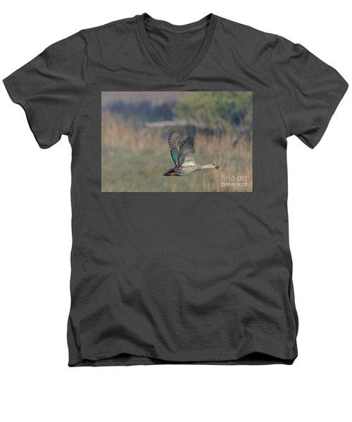 Indian Spot-billed Duck 03 Men's V-Neck T-Shirt