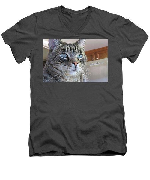 Indy Men's V-Neck T-Shirt by Vivian Krug Cotton