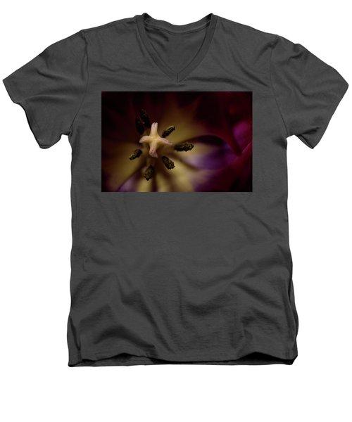 Inner Self Men's V-Neck T-Shirt