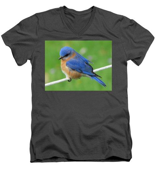 Intense Blue Bird Men's V-Neck T-Shirt by Betty Pieper