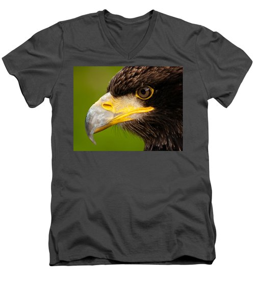 Intense Gaze Of A Golden Eagle Men's V-Neck T-Shirt