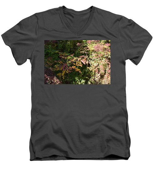 Into The Unknown 2 Men's V-Neck T-Shirt