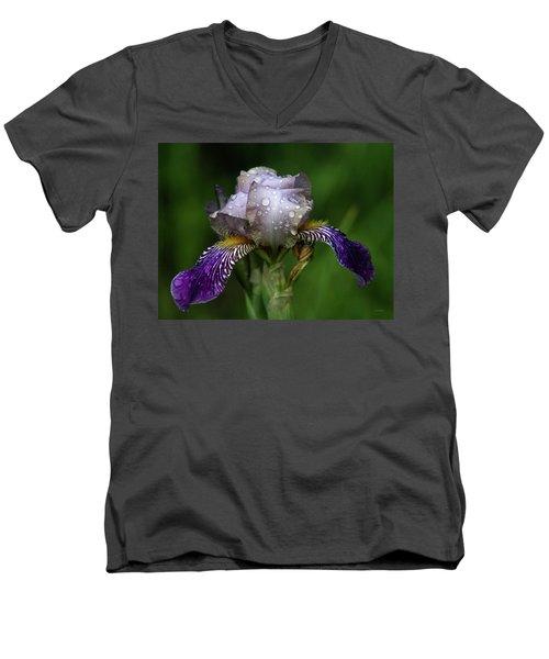 Iris After The Rain 1409 H_2 Men's V-Neck T-Shirt