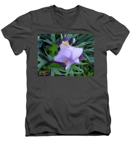 Iris After The Rain IIi Men's V-Neck T-Shirt
