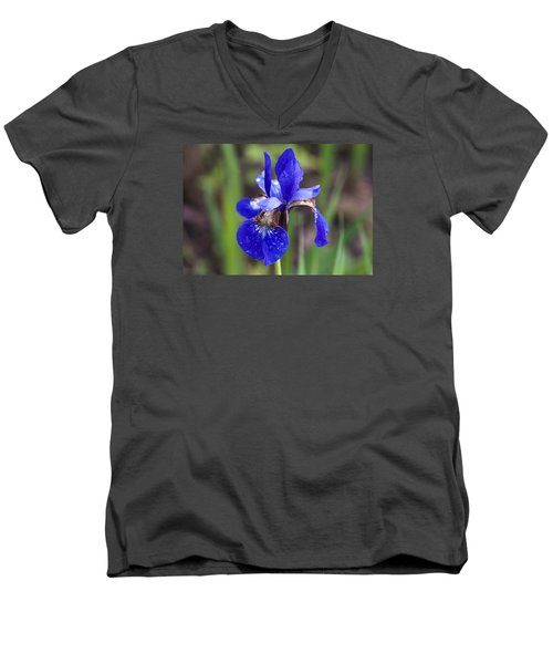 Iris Men's V-Neck T-Shirt by Dan Hefle