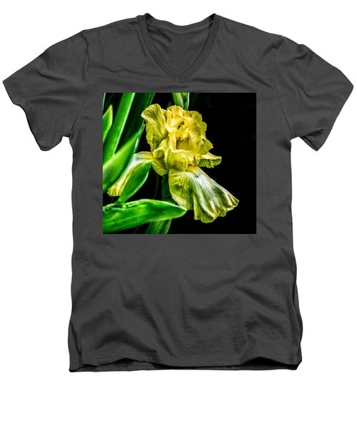 Iris In Bloom Men's V-Neck T-Shirt
