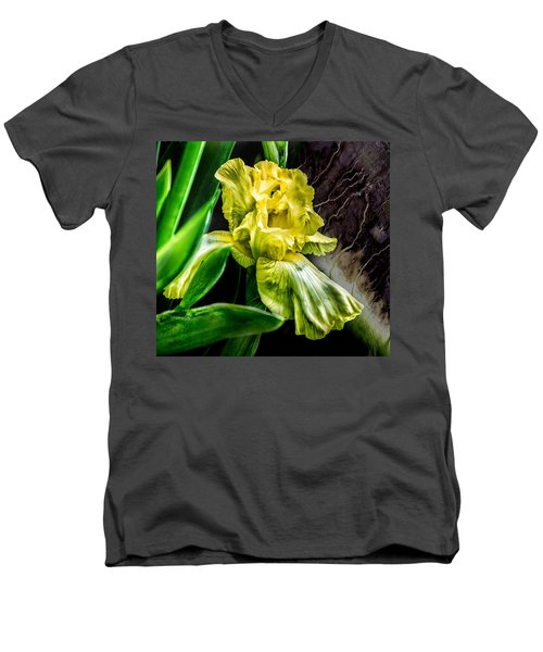 Iris In Bloom Two Men's V-Neck T-Shirt