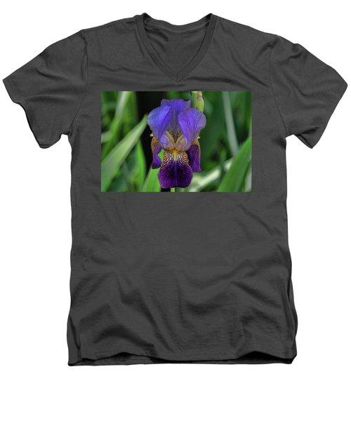 Iris Purple 2 Men's V-Neck T-Shirt